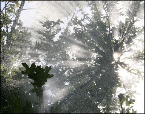 Sun Shower by Plans For Sun Shower 04 Artwork