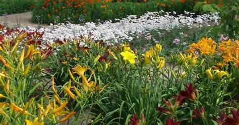 the well fed garden feeding perennials