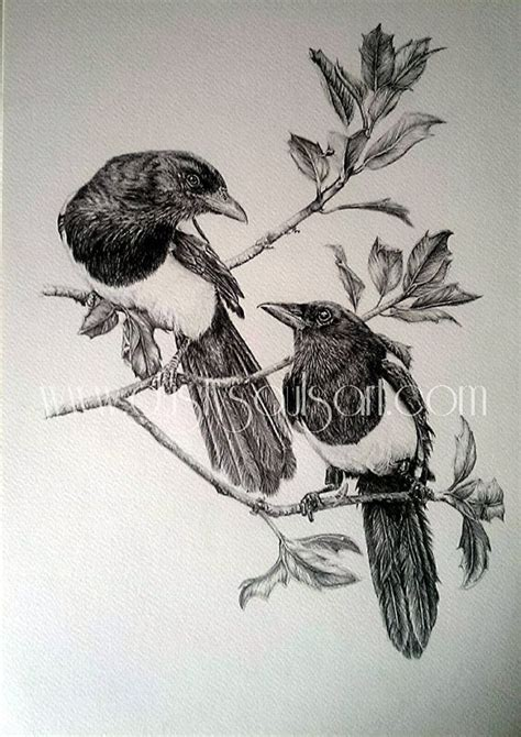 magpie tattoo design 111 best images about magpie on coyotes