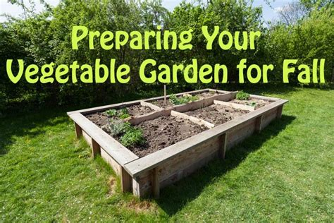 Preparing Your Vegetable Garden For Fall Quiet Corner Preparing Vegetable Garden For Winter