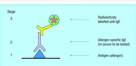 test rast radioallergosorbent test radioimmunosorbent assay of