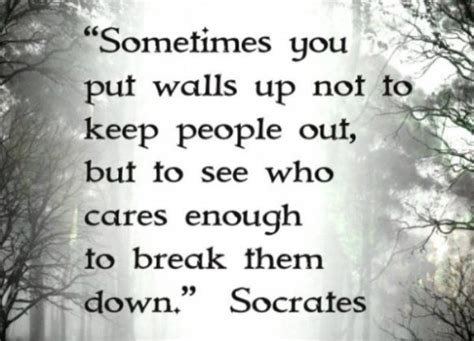 a unexamined quote socrates quotes that will make you wiser