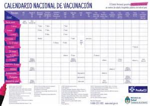 Calendario De Vacunas Salud Recuerda La Importancia De Tener Completo El