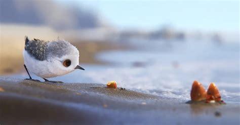 pixar short film larva full pixar s new short film piper