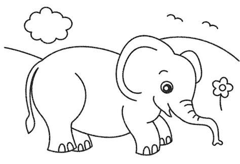 tutorial gambar hewan untuk anak 20 gambar hewan untuk diwarnai anak anak 2017 kumpulan