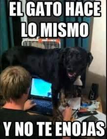 Funny Memes En Espaã Ol - best 25 spanish memes ideas on pinterest funny spanish