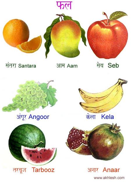 vitamin b vegetables names fruit names in the drawings veggies