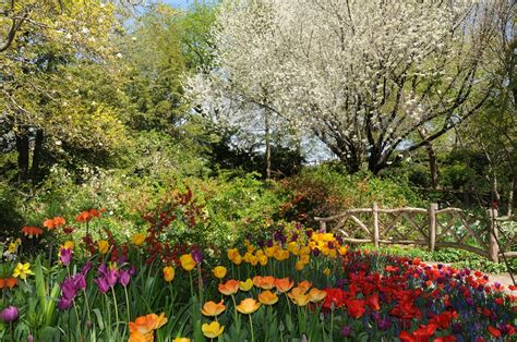 Shakespeare Garden Central Park by New Yorker Spotlight Cedar Miller And Larry Boes Of
