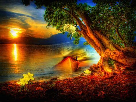 imagenes hermosas amaneceres fotos de paisajes al amanecer con flores im 225 genes de