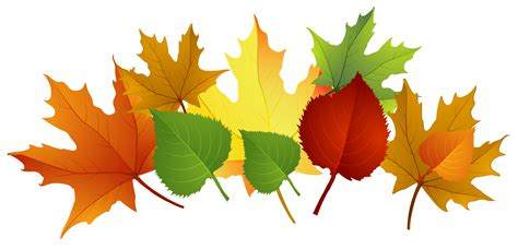 clipart autumn leaves fall leaves fall clip autumn clip leaves clip