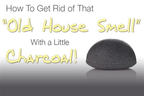how to get rid of house odors 8 best ideas about for the home smell and odor removers