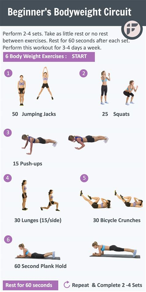 for beginners weight circuit exercises images