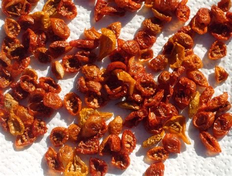 Sun Dried Tomatoes In sun dried tomato