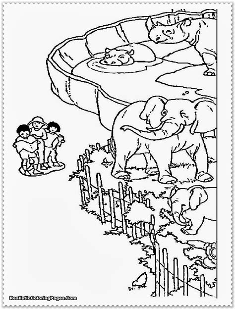 printable coloring pages zoo animals zoo animal coloring pages realistic coloring pages