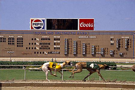 southland track razorback classic stakes 1 review greyhound betting preakness