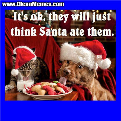 Best Christmas Memes - best christmas memes pictures to pin on pinterest pinsdaddy