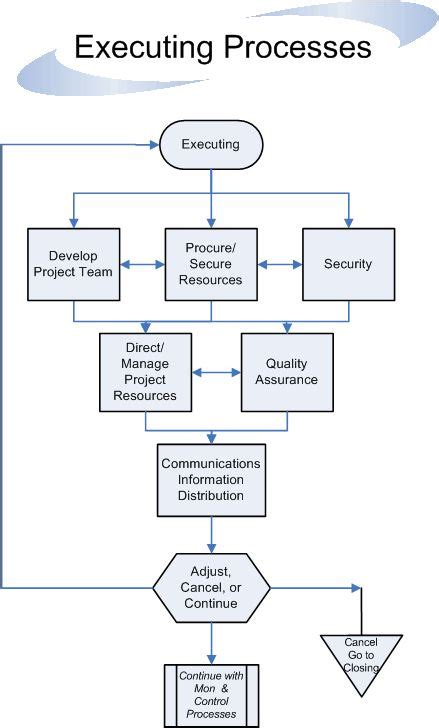 project flowchart executing processes flow project managment pmi pmp