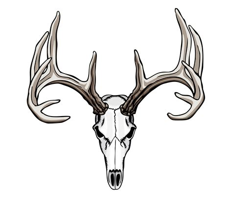deer head tattoo design whitetail deer skull tattoos nouveau