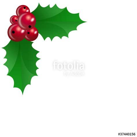 imagenes de navidad para decorar hojas quot decoraci 243 n de navidad con hojas de acebo quot fotos de