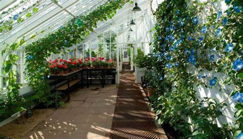 how to house a grown 15 most popular vegetables and fruits to grow in a green house the self sufficient