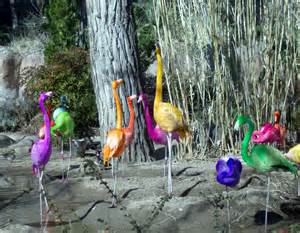 What Are The Rainbow Colors rainbow flamingos i kno bad photoshop ah well that