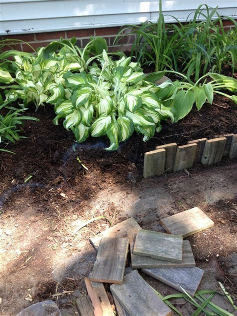 garden edging landscape edging ideas with recycled
