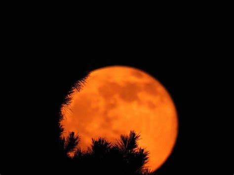 strawberry moon on summer solstice summer solstice and strawberry moon coming in june 2017
