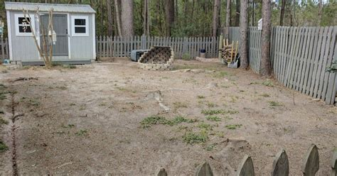 dirt backyard ideas bare dirt yard ideas needed hometalk