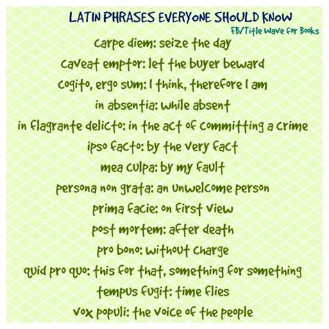 latin tattoo quotes and translations latin phrases everyone should know free content collide