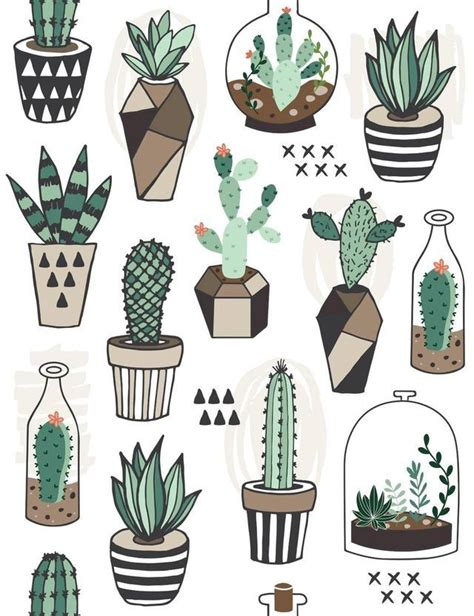 doodle xpressions 70 best kakteen images on doodles succulents