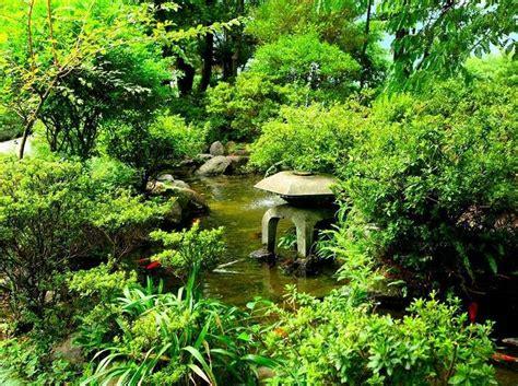 traditional japanese vegetable garden garden