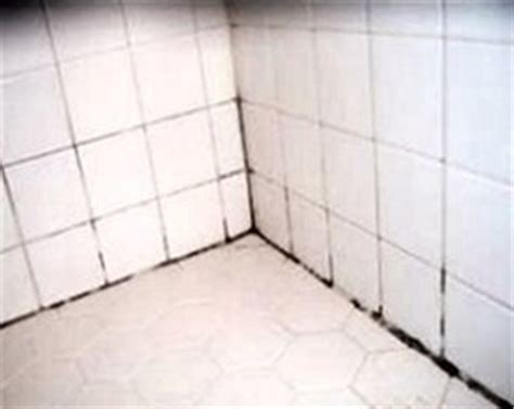 remove mold from bathroom grout best way to remove mold and mildew from tile grout