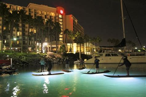 ops paddle board lights nite ops paddle tours picture of san diego bay