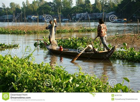 row your boat fish fisherman rowing row boat to catch fish on river editorial