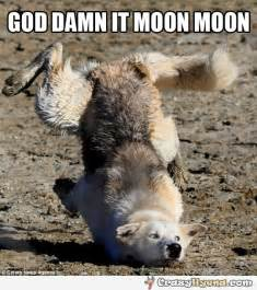 Moon Meme - moon phases tumblr memes