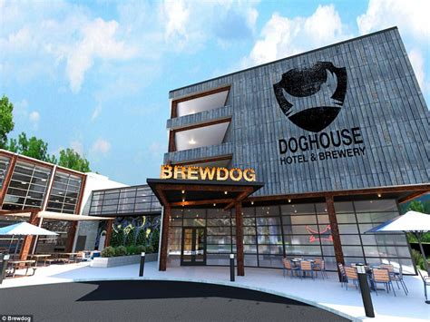 theme hotel ohio brewdog hotel to open in ohio featuring ale tap in bedroom