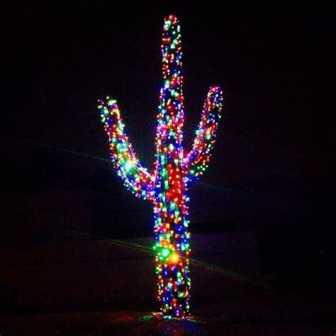 saguaro tumblr