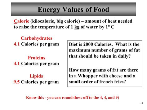 carbohydrates 4 calories per gram chapter 24 nutrition metabolism lecture ppt