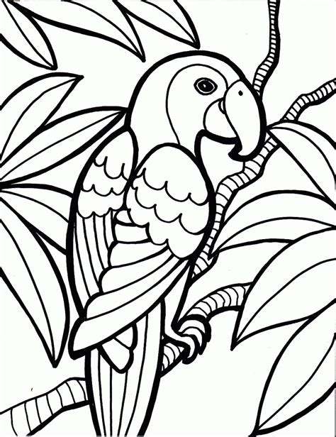 Parrot Coloring Pages Printable Color Printable Pages