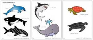 sea animals printable templates amp coloring pages
