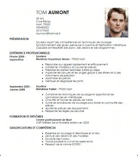 Exemple Curriculum Vitae Professionnel by Exemple Cv Professionnel Un Cv Exemple Psco