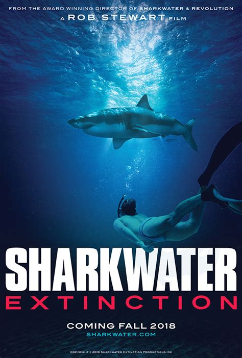 sharkwater official movie site help save sharks