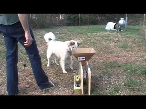 automatic thrower for dogs diy the world s catalog of ideas