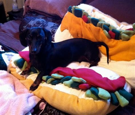 hot dog bun dog bed hot dog bun doggie bed your wiener dog needs more mustard
