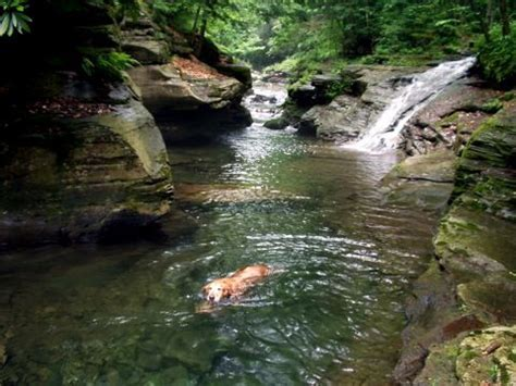 Swimming Holes Pin By Paula Grech On Outdoors