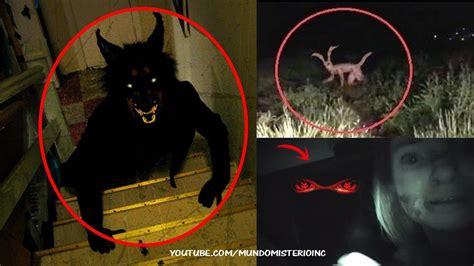 imagenes extrañas de terror reales criaturas extra 241 as captadas en c 225 mara y vistas en la vida