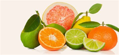 fruits pic 8 top disease fighting fruits to maintain your health