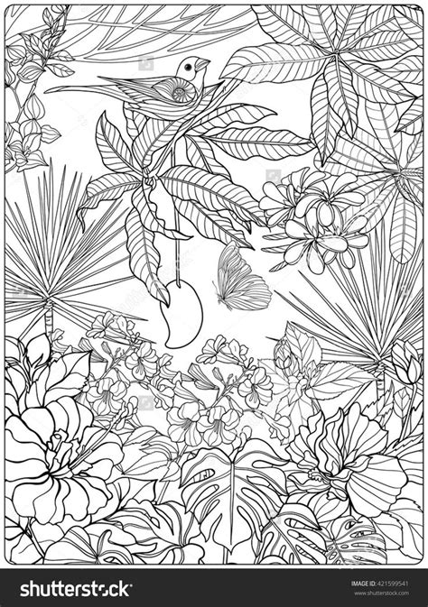 tropical leaves coloring pages 584 best coloring pages to print birds images on