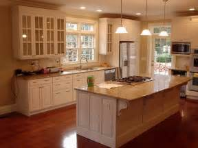 What Color To Paint My Kitchen Cabinets Solved What Color Should I Paint My Kitchen With White