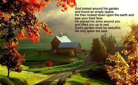 God Looked Around His Garden by God Looked Around His Garden And Found An Empty Space He